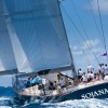 Voiles de Saint-Barth complete - celebrations in Gustavia