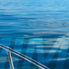 SYBA and AIMEX to collaborate closer in the future