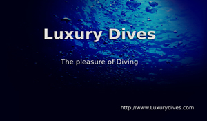 LUXURY DIVES